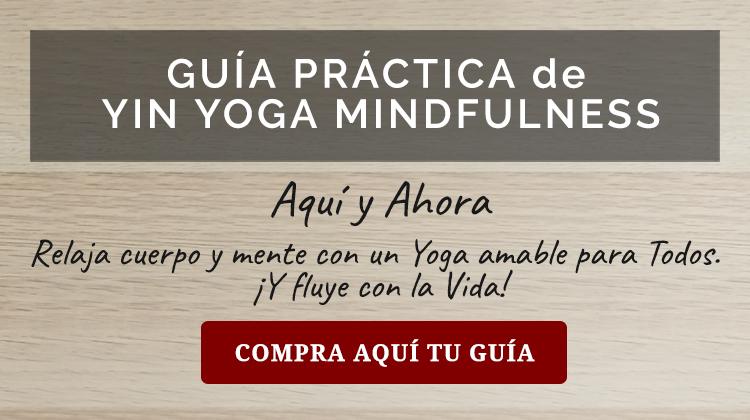 Guía Yin Yoga Mindfullness